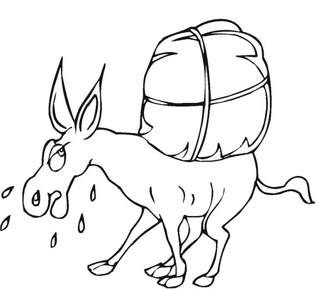 Donkey Printable Coloring Pages